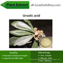 Ursolic CAS: 77-52-1 Enhance Immune Function Ursolic Acid Ursolic