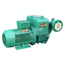 CCS Certify CWX Series Vortex Pump