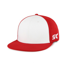 Bordado o estampado papá gorra de béisbol