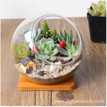 Hand Blown Faceted Glass Succulent Terrarium Geometric
