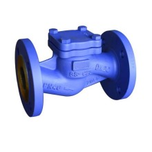 Stainless steel Lift check valve