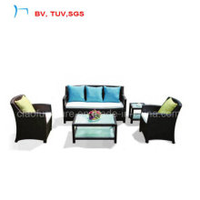 Indoor Furniutre Home Rattan Sofa (7012)