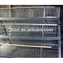 Equipo de granja avícola de pollos de alta calidad para la venta