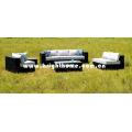 Mobília do Rattan / mobília ao ar livre (BP-852)