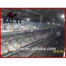 Cage de poulet volaille commerciale / cage de poulet