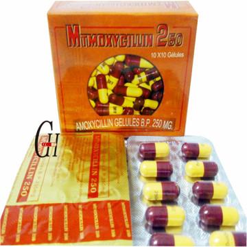 Amoxycillin cápsulas 250 mg
