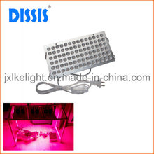 Effective LED Grow Light for Greenhouse/Gardening