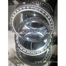 China Travel Motor Bearing