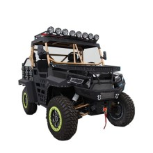 dune buggy 1000 UTV hunting car
