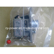 Shanghai Fortrust Engine Electrical Governor for Generator But