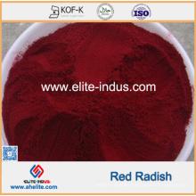 Pigmento rojo del rábano rojo del rábano rojo de la comida natural