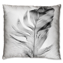 Elegant feather design cushion