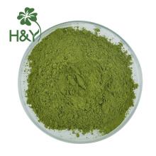 Food grade fresh Macha Green Tea matcha powder