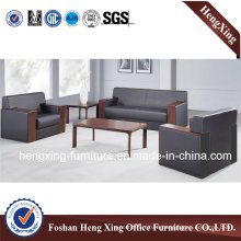 Modern Sofa / Leather Sofa / Office Sofa (HX-SN009)