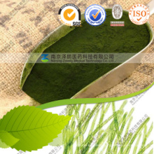 Wholesale Health Product Chlorella Powder/Tablet/Capsule
