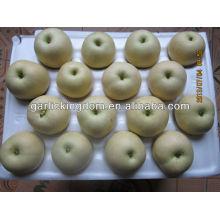 Продать 2013 Изумрудная груша