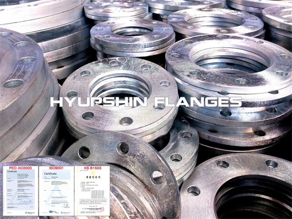 Hyupshin Flanges Sans1123 Backing Ring Hot Galvanized