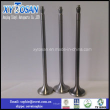 Diesel Intake and Exhaust Engine Valves for G300 Marine/ Ship Auto Parts