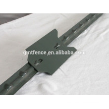 hot sale PVC coated heat treated 10 ft t post for American Market