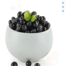 Nova cultura Hebei Origem HPS feijão preto preto feijão