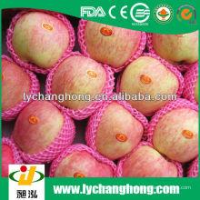 Fabrik direkt liefern hohe Qualität fuji frischen Apfel