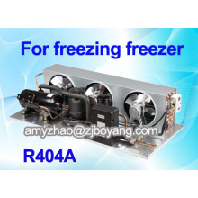 réfrigérateur pour entrepôt avec unité de condensation de réfrigération commerciale R404a