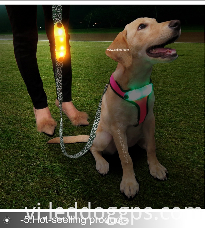 Led Light-Up Dog Lead