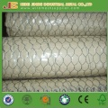 """3/4"""" Mesh Chicken Wire Netting with Good Quality"""