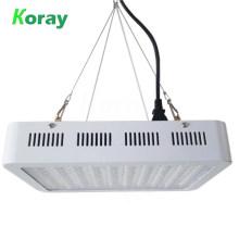 Horticultural LED lights full spectrum rohs LED grow light 1000 watt