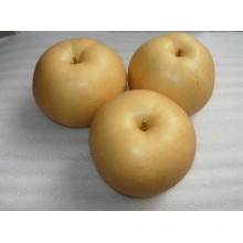 2015 Top Quality Fengshui Pear