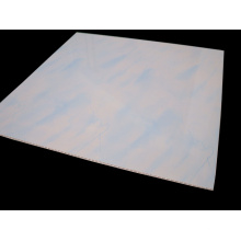 Af-219 Colorful PVC Panel