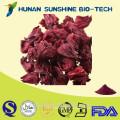 Dried Hibiscus Flowers Extract/Hibiscus sabdariffa Extract Powder/Hibiscus Juice Powder