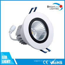LED Down Light 12W CE et RoHS LED Downlight