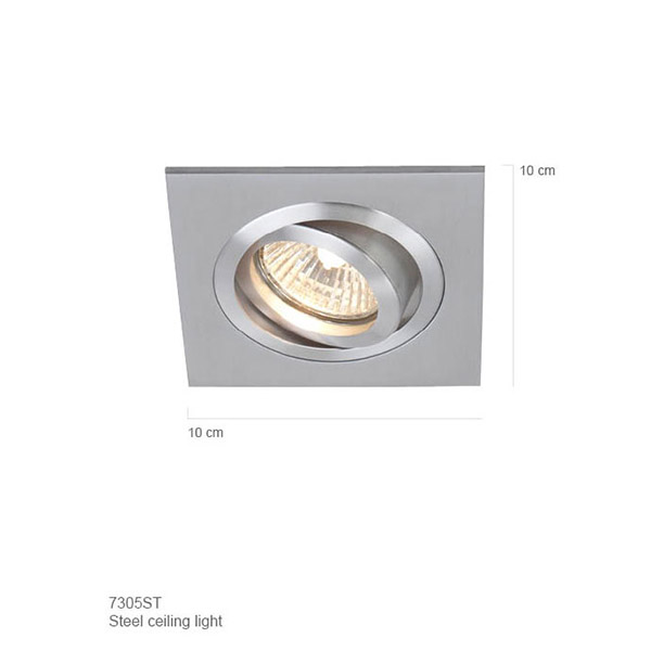 The Ceiling LED Spot Light