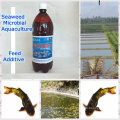 biopreparado de algas marinas utilizado para la alimentación de la acuicultura
