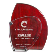Prêmios personalizados de reconhecimento de placas perpétuas acrílicas baratas
