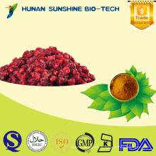 Extrait de fruit de Schizandra Berry / Schisandra chinensis extrait de poudre avec la schizandrine 3% HPLC
