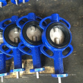 Wafer Type Double Axis Butterfly Valve