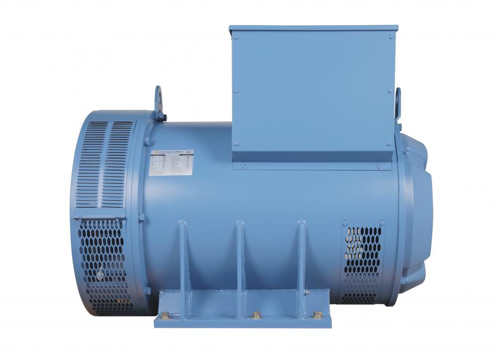Low Voltage 50HZ Brushless Generator
