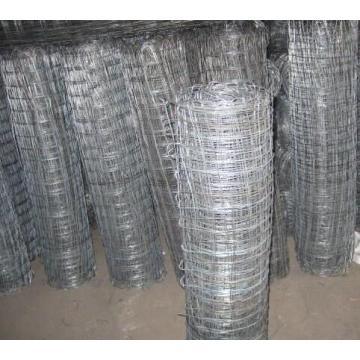 Graticules Mesh Chink Link Wire Mesh