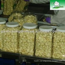 Verkaufen Dehydrierte (verarbeitete) Knoblauch