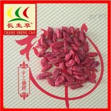 Dry fruits organic dried red goji berries