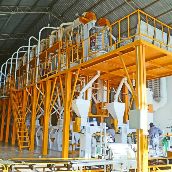 Tanzania 100T Maize Flour Mill