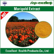 Extrato de Marigold Natural 100% Luteína