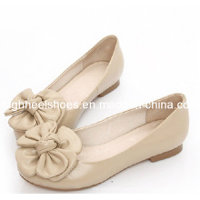 New Design Flat Ladies Shoes (Hcy02-880)