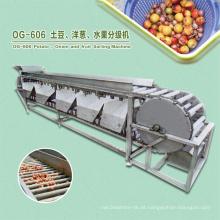 Máquina de classificação de classificação comercial da fruta da manga do alho de Mulifunction