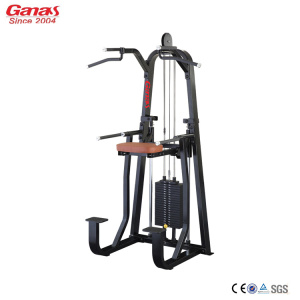 Profesional Gym Fitness Machine Dip Chin Assit