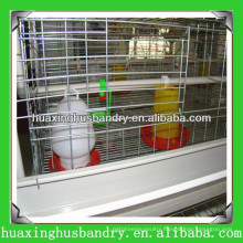 chicken cage of brood for chicken farm