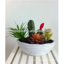Plantas de cactus artificiales al por mayor 2014 Mini cactus