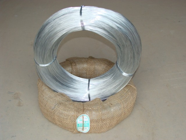 1.0mm BWG19 Galvanized Binding Wire (3)